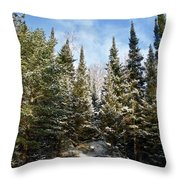 Standing Tall 4832 Throw Pillow