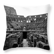 Stands The Test Of Time Throw Pillow