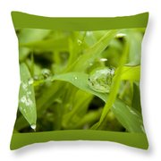 Standstill Drop Throw Pillow