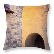Stanford Arches Throw Pillow