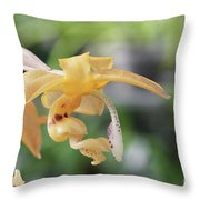 Stanhopea Orchid Throw Pillow
