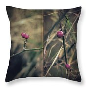 Stanza Throw Pillow