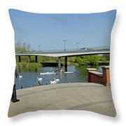 Stapenhill Gardens - A New Look Throw Pillow