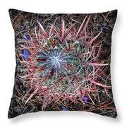 Star Cactus Pink-aqua-blue Throw Pillow