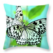 Star Crossed Lovers. Japanese Poetry Throw Pillow