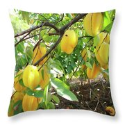Star Fruit Belongs To The Plant Family Throw Pillow