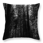 Star In The Forrest Throw Pillow