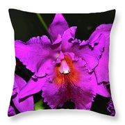 Star Of Bethlehem Orchid 006 Throw Pillow