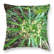 Star Of The Pond Throw Pillow