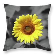 Star Of The Show - Standing Out Throw Pillow