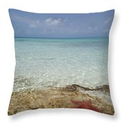 Star Paradise Throw Pillow