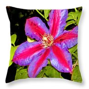 Star Treatment Throw Pillow