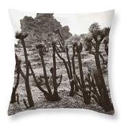 Star Trek Joshua Trees Throw Pillow