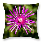 Starburst Of The Wildflowers Throw Pillow