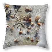 Starfish And Sea Shells Throw Pillow