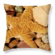 Starfish And Seashells Throw Pillow
