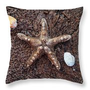 Starfish And Seashells Throw Pillow