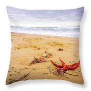 Starfish Throw Pillow by Gary Gillette