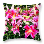 Stargazer Lilies #5 Throw Pillow