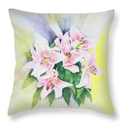 Stargazers  1 Throw Pillow