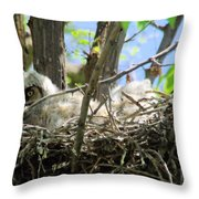 Staring From Its Nest Throw Pillow