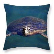 Staring Turtle Throw Pillow