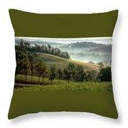 Stark Ridge Morning Throw Pillow