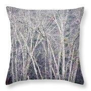 Stark Winter Throw Pillow