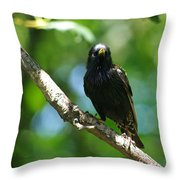 Starlet Throw Pillow