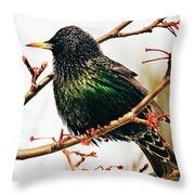 Starling Throw Pillow