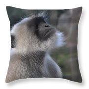 Starring In The Sky Throw Pillow