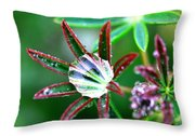 Starry Droplets Throw Pillow