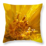 Starry Goldeneye Throw Pillow