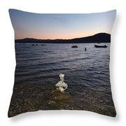 Starry Sky Over Lake Tahoe Throw Pillow