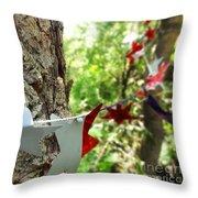 Stars Around Tree 1 Throw Pillow