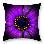 Stars In The Daisy Throw Pillow