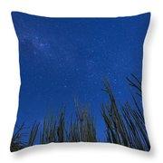 Stars Over Cactus Throw Pillow