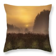 Start Of A New Day Throw Pillow by Blanca Braun