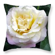 Starting To Blush Throw Pillow