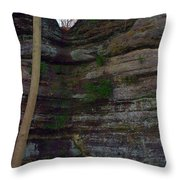 Starved Rock No 1 Throw Pillow