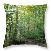 Starved Rock Number 24 Throw Pillow