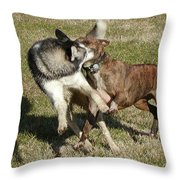 State Employees On Break Throw Pillow
