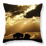 Stately American Bison Throw Pillow
