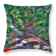 Stay On Your Path Throw Pillow