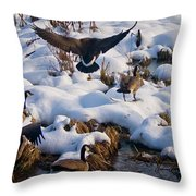 Staying Put Throw Pillow