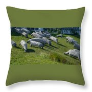 Ste Flavie 002 Throw Pillow