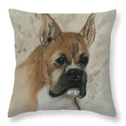 Steady Goes It Throw Pillow