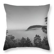 Steam Valley Bw Throw Pillow