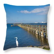 Steamboat Landing Ot Melbourne Beach In Florida  Throw Pillow