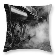 Steamed Throw Pillow